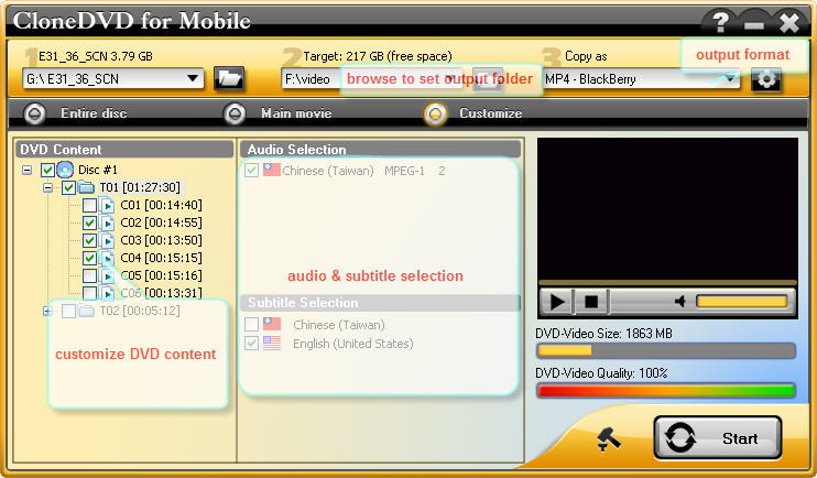 customize dvd ripping