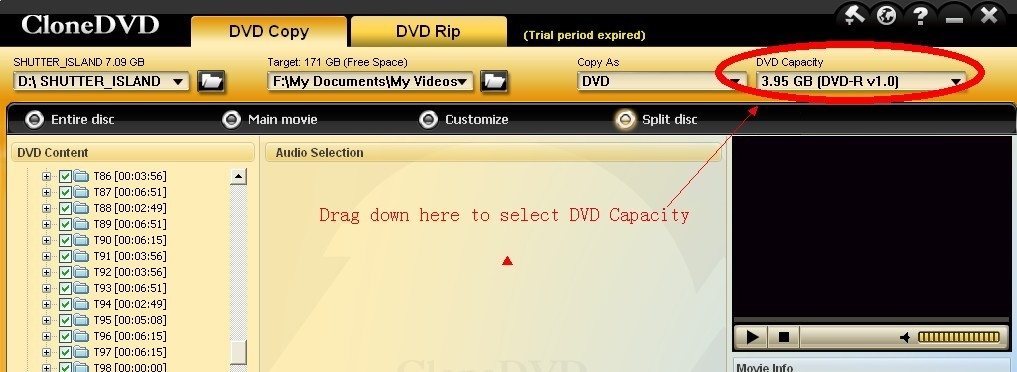 How to select DVD Capacity option in CloneDVD6