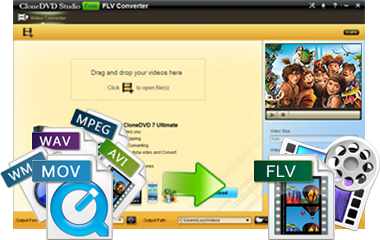 convert mp4 avi wmv to flv