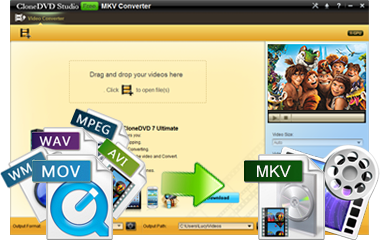 convert mp4 avi mov wmv to mkv