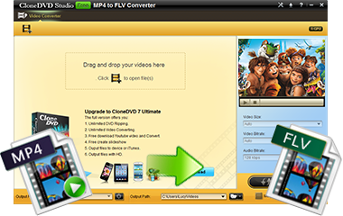 Convert MP4 to FLV